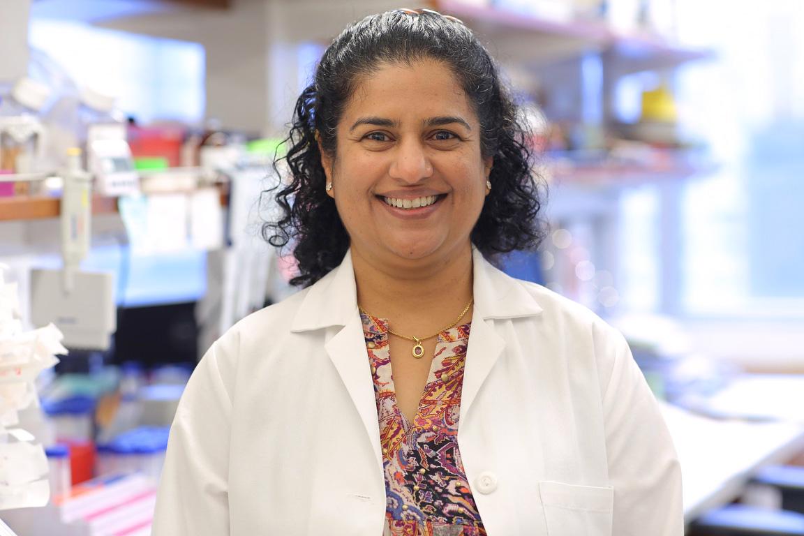 Dr. Anjali Rajadhyaksha