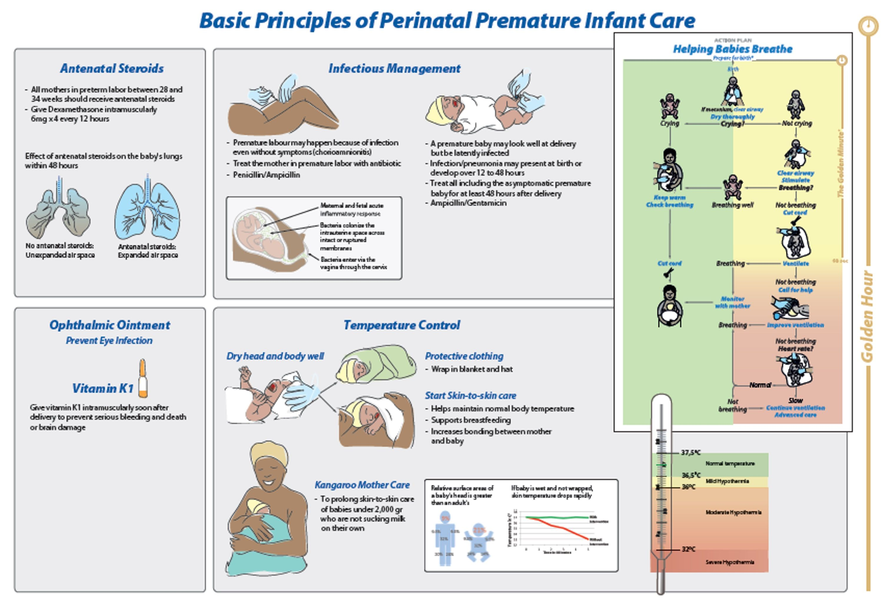 - Basic Principles of Perinatal Premature Infant Care